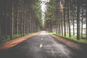 Trouver son chemin
