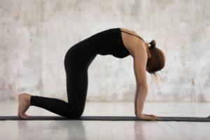 Yoga : comment vivre de sa passion ?